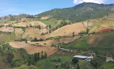 Depredacion Valle Nuevo